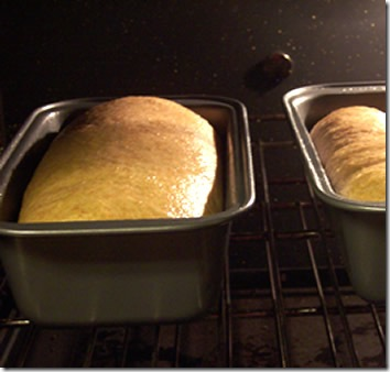 BBA-whole-wheat-bread 031
