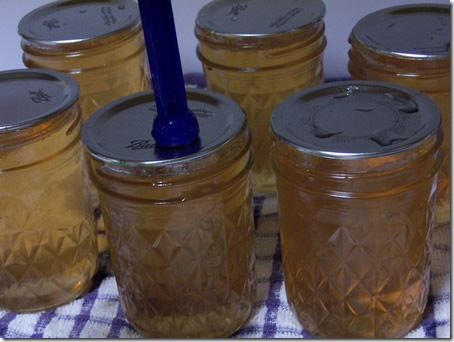 apple-jelly-and-sauce 021