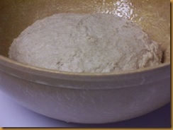 basic-savory-bread-dough 008