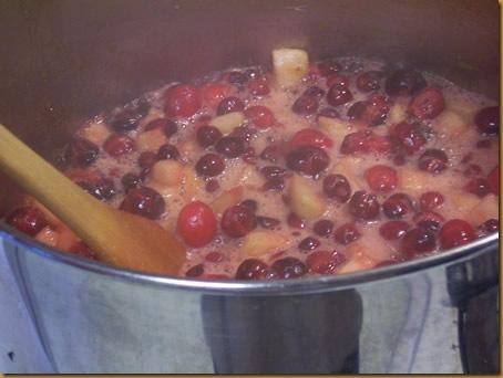 spiced-cranberry-preserves 020