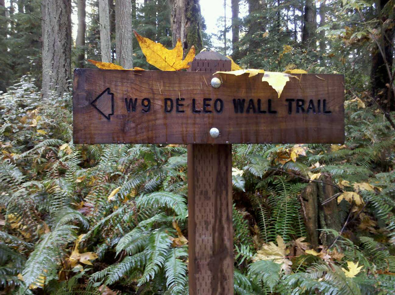De Leo Wall Trail