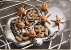 PnutSpiders