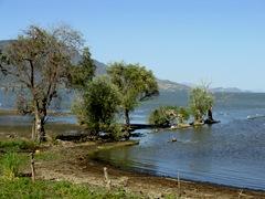 Roca Lake no Birds