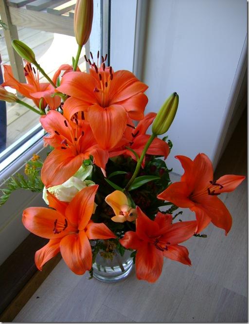 Blomster 004