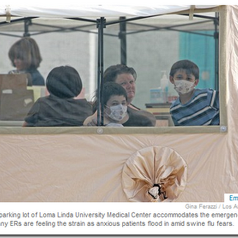 Los Angeles and Other Major Metropolitan Area ER Rooms are Busy with Patients Fearing Flu