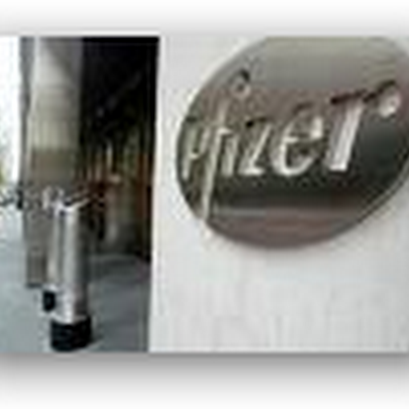 Pfizer Looking At Turkish drug company for Possible Acquisition