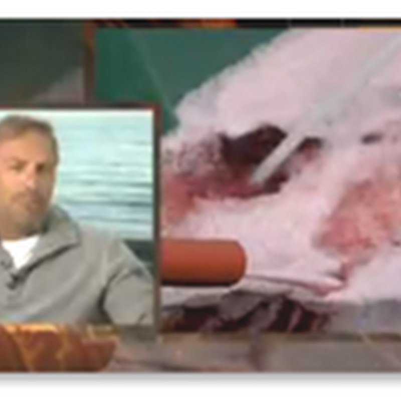 Kevin Costner Talks About His Oil Spill Technology that BP Has Purchased – Cleaning up the Water With Technology That Was Created Over 10 Years Ago – Tech Denial Outside of Healthcare Too