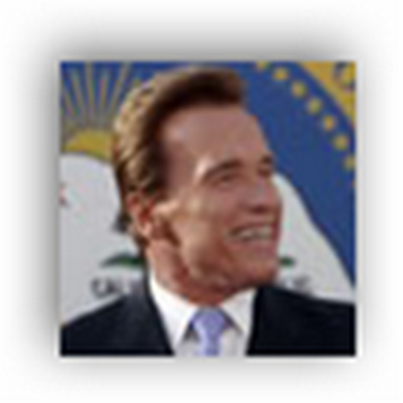 Gov Schwarzenegger Announces Launch of  Veteran Service Projects (Healthcare) For California In Honor of Veterans Day
