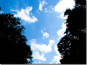 convertible sky