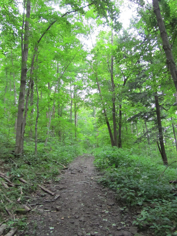 trail to herkimer diamond mine