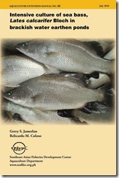 AEM 46 Intensive culture of sea bass Lates calcarifer in brackishwater earthen ponds
