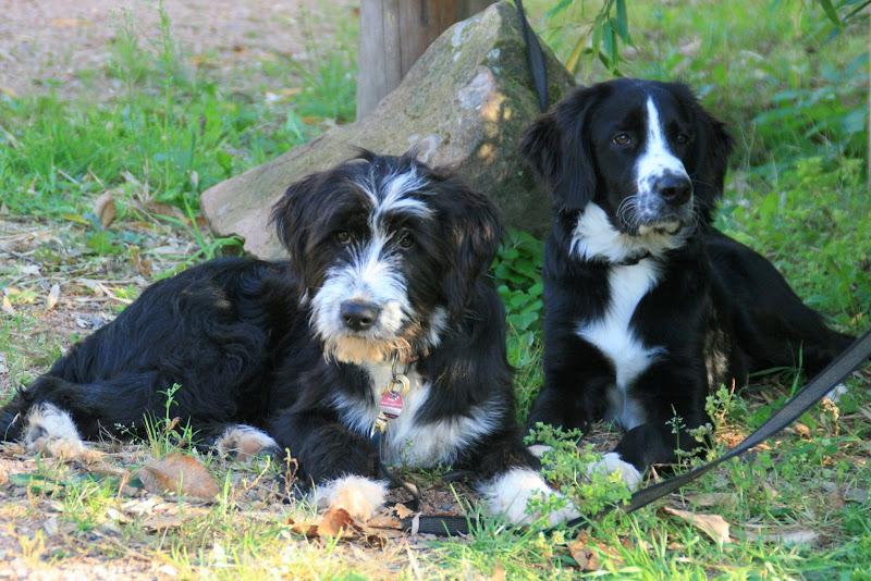 Cate und Amos