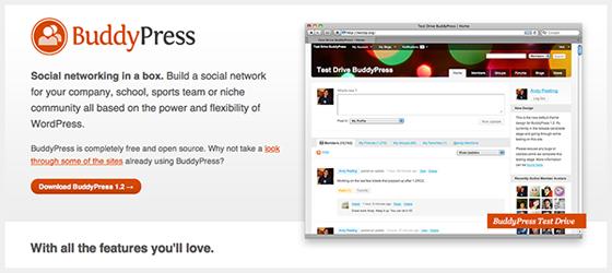 BuddyPress 1.2