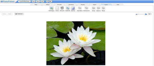 онлайн сервис FotoFlexer