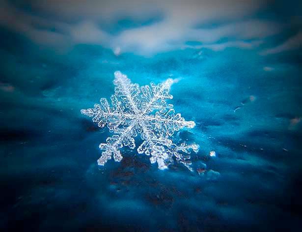 снежинка макро сьемка