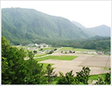 Ulleung Nari Basin