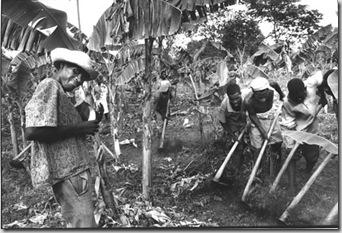 HAITI 2002H18