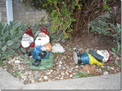 band concert gnomes 037