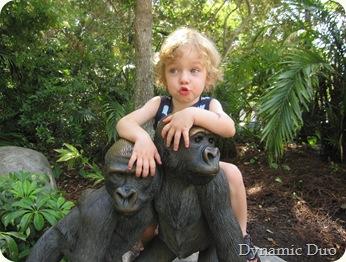 monkey see, monkey do!