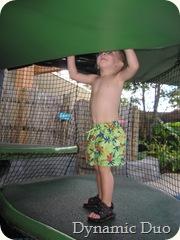 jungala playtime tree - gus climbs (2)