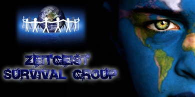 Zeitgeist Survival Group by Factual Solutions