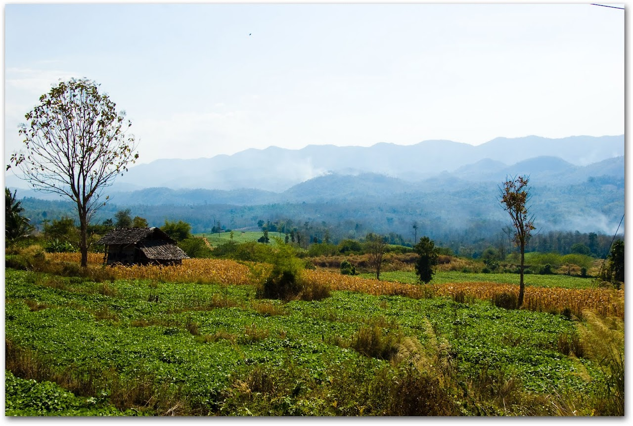 Mae Sot countryside