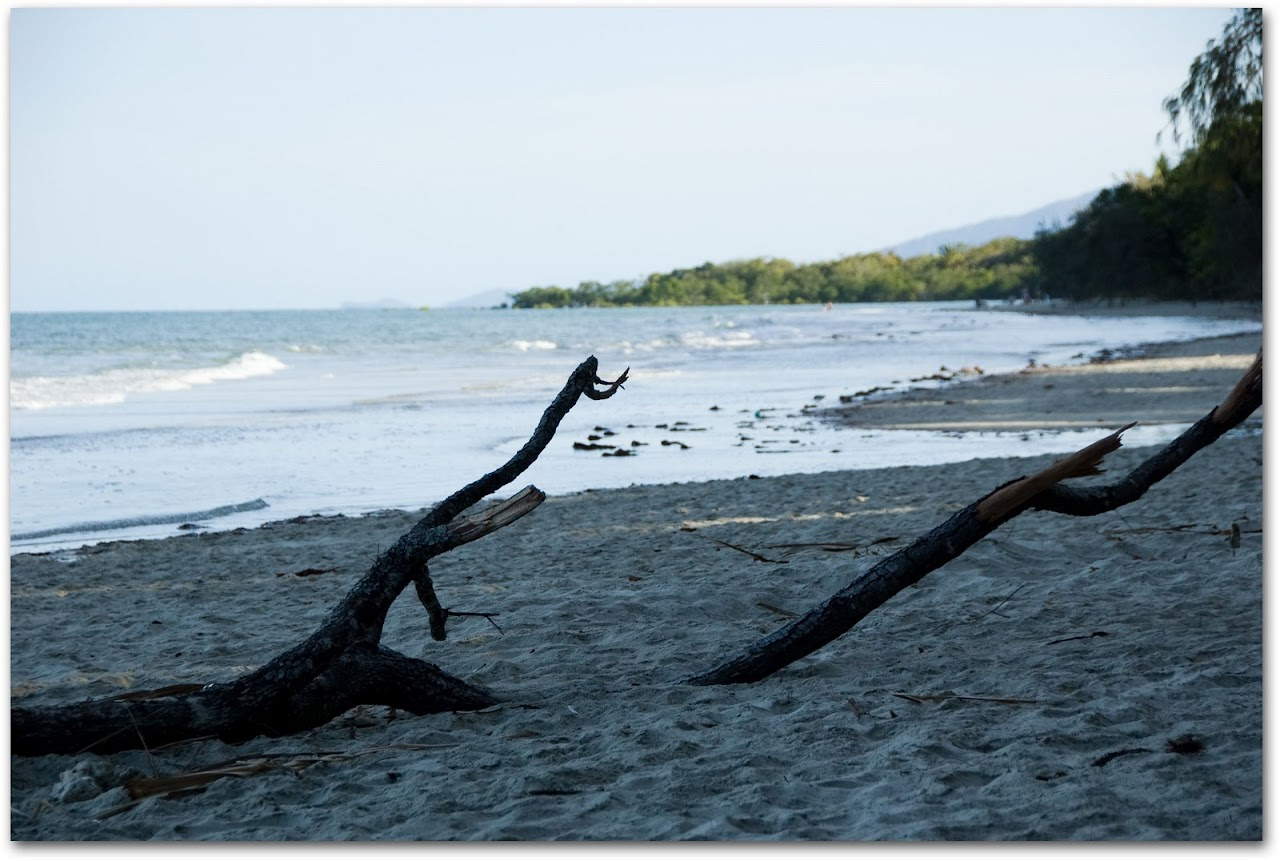 Beach at Cape Tribulation
