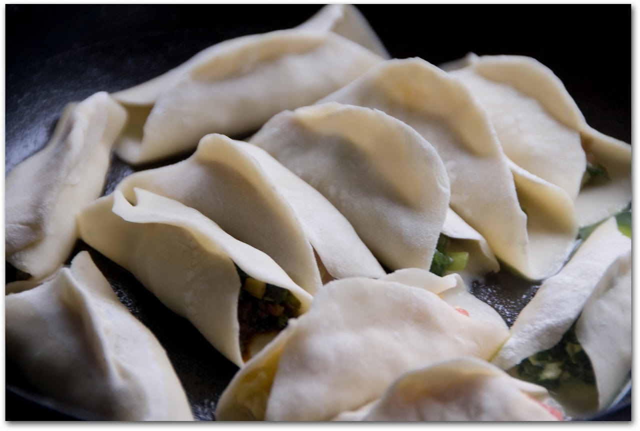 dumplings the himalayan dumplings chicken and dumplings jiaozi chinese ...