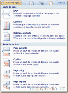 "Word 2007, Liste des options du bouton ""Saut de page"""