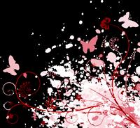 butterfly200