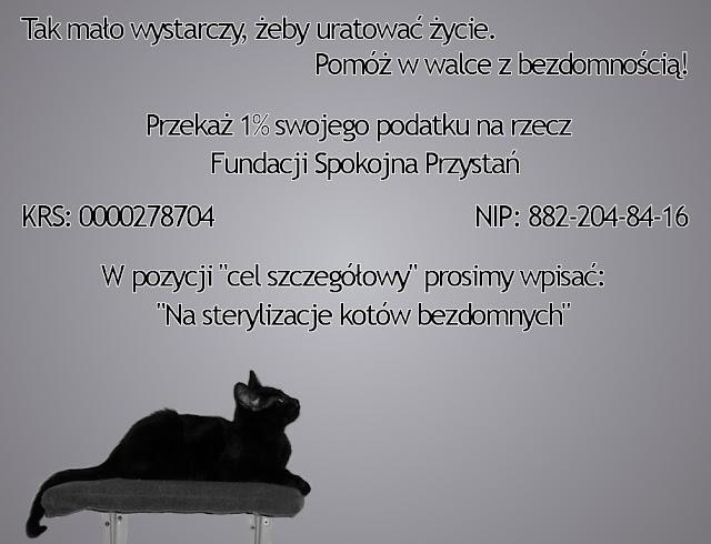 http://lh3.ggpht.com/_vspM7hsKX6I/SaMDKrMh3GI/AAAAAAAAAsY/JRCsz-LMb_Q/s640/ulotka3.jpg