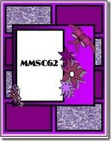 MMSC62 FANCY 1