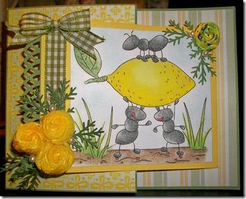 Lemon Ants