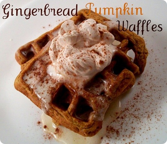 gingerbread_pumpkin_waffles[3]2
