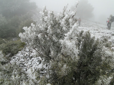 Cresteando el cielo pico lopera for Meson madera otivar