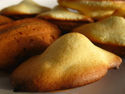 Articole culinare : Madeleine