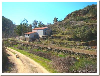 Vista da ribeira ao longo da propriedade e da parede