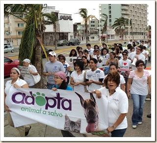 Marcha a favor de los animales octubre (8)