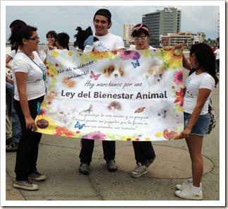 Marcha a favor de los animales octubre (1)