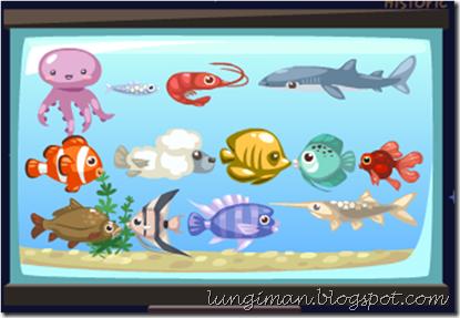 lungi2fish