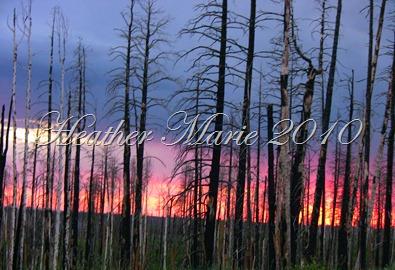 Utah Trip June 29-July 5 170