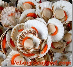 Scallops_Recipes_Page