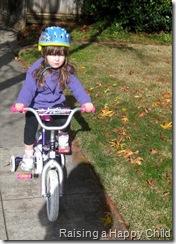 Jan1_Bike