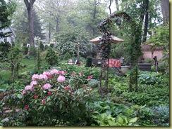 Garden May 2009 003