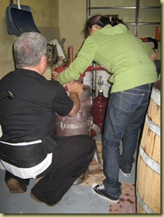 Wine making DiDario 10.09 008