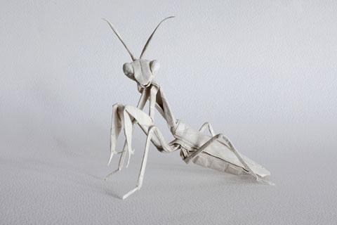 Origami (折り紙) Parte 2