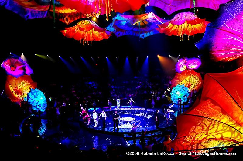 Le Reve Cast Wynn Theater Wynn Encore Las Vegas