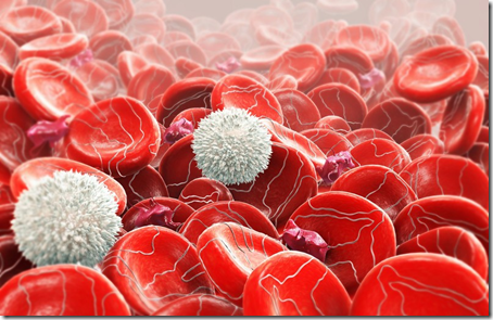 eritroblastosis