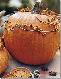 pumpkins-and-vinesstarycreekprimitives.blogspot.com