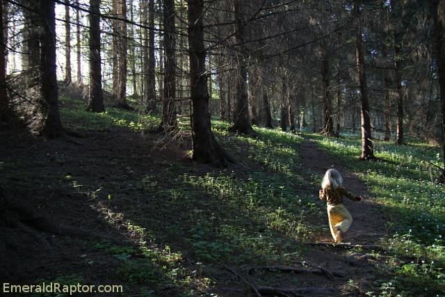 prinsesse Gullhår i Eventyrskogen